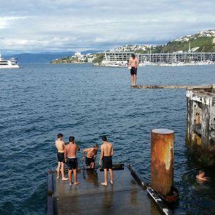 Wellington , des jeunes kiwis en train de plonger
